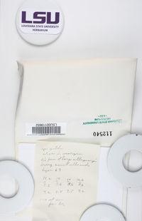 Caloplaca brouardii image