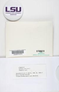 Cladonia hypoxantha image