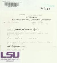 Lobaria pseudopulmonaria image